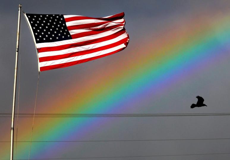 HM C08.BR.rainbow
